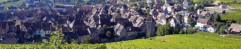 R�nation � Riquewihr d'une vieille demeure de viticulteur de l'�poque Renaissance, face au grand cru Schoenenbourg. 6 nouveaux g�tes de luxe sont disponibles.