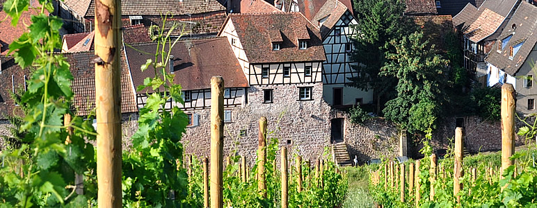 New luxury holiday gites with a historical touch and modern comfort in Riquewihr, Alsace France