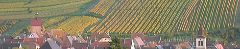 Riquewihr in Alsace is a milestone on the Alsace wine route. More about wine seminar and tastings.